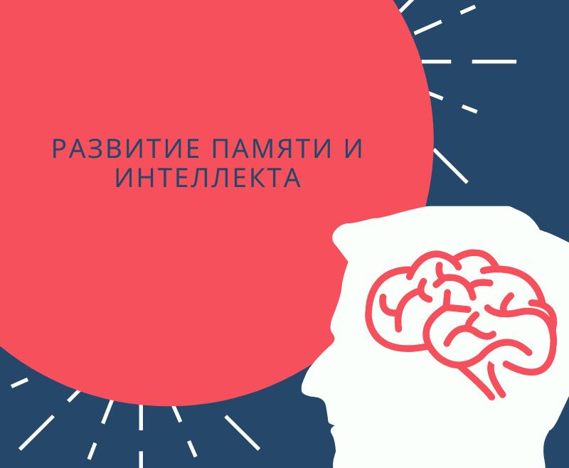 Развитие памяти и интеллекта